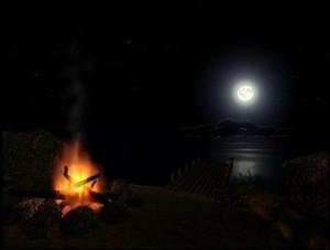 ночь у костра