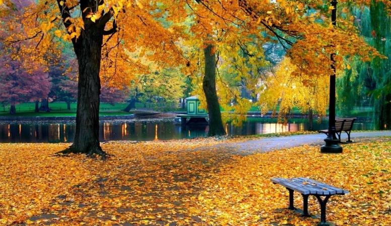 ступает осень...