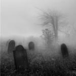 О жизни и смерти
